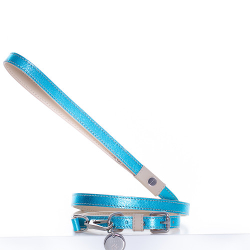 PET COLLAR with LEASH (Blue)